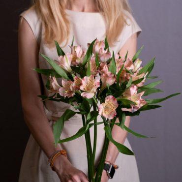 Альстромерия розовая Купить Челябинск